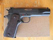 Colt ACE Service Model