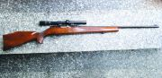 Beretta WEATHERBY MARK XXII
