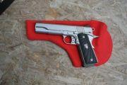 CABOT GUNS GOVERNMENT
