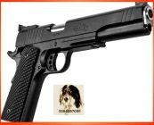 Remington 1911 R1 10 MM
