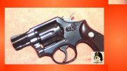 Smith & Wesson 10