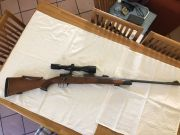 Dumoulin Mauser DR 264 WM